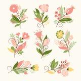 Floral σύνολο Στοκ Εικόνα
