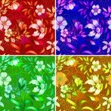 floral ταπετσαρία Στοκ φωτογραφίες με δικαίωμα ελεύθερης χρήσης