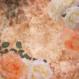 floral τριαντάφυλλα ανασκόπησ&et Στοκ Φωτογραφίες