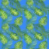 Floral τροπικό άνευ ραφής σχέδιο Watercolor με τα πράσινα φύλλα monstera και τα φύλλα φοινίκων στο μπλε ελεύθερη απεικόνιση δικαιώματος
