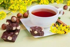 Floral τσάι Στοκ Εικόνες