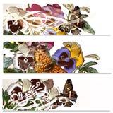 Floral υπόβαθρα που τίθενται με τα λουλούδια βιολέτων Στοκ Εικόνες