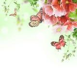 Floral υπόβαθρο και πεταλούδα Στοκ φωτογραφία με δικαίωμα ελεύθερης χρήσης