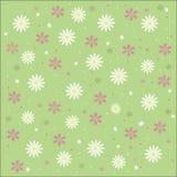 Floral υπόβαθρο κρητιδογραφιών, καλοκαίρι, άνοιξη Στοκ φωτογραφία με δικαίωμα ελεύθερης χρήσης
