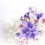 Floral υπόβαθρο με τα λουλούδια Στοκ εικόνες με δικαίωμα ελεύθερης χρήσης