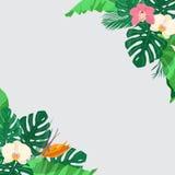 Floral υπόβαθρο με τα τροπικά φύλλα και τα εξωτικά λουλούδια Στοκ φωτογραφία με δικαίωμα ελεύθερης χρήσης