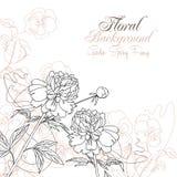 Floral υπόβαθρο με τα pansies και peonies Στοκ Φωτογραφίες