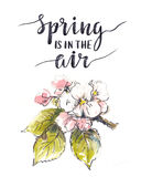 Floral υπόβαθρο Watercolor με τα ευγενή λουλούδια του μήλου Κάρτα σχεδίου άνοιξη διανυσματική απεικόνιση