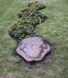 Floral φίδι, Cusco, Περού Στοκ Εικόνες
