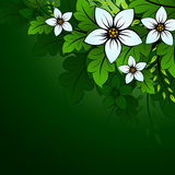 floral φυσικός ανασκόπησης Στοκ εικόνες με δικαίωμα ελεύθερης χρήσης
