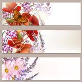 Floral φυλλάδια καθορισμένα Στοκ Φωτογραφία