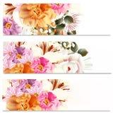 Floral φυλλάδια που τίθενται με τα λουλούδια Στοκ εικόνες με δικαίωμα ελεύθερης χρήσης