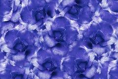 Floral φωτεινό άσπρος-μπλε υπόβαθρο από τα τριαντάφυλλα convolvulus σύνθεσης ανασκόπησης λευκό τουλιπών λουλουδιών Λουλούδια με τ Στοκ Εικόνα