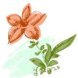 floral χαιρετισμός καρτών ελεύθερη απεικόνιση δικαιώματος