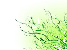 Floral. Green floral vitality decoration with copyspace for your text Stock Photos