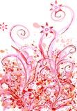 Floral Imagem de Stock Royalty Free