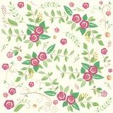 Floral υπόβαθρο λουλουδιών Στοκ Εικόνες