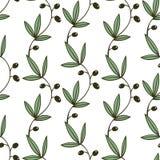 Άνευ ραφής πράσινο Floral σχέδιο με τα κλαδί ελιάς Στοκ εικόνα με δικαίωμα ελεύθερης χρήσης