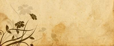 floral παλαιά περγαμηνή σχεδίου Στοκ φωτογραφίες με δικαίωμα ελεύθερης χρήσης