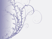 Floral. Abstract floral background for your business Stock Image