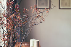 Ξηρά floral ρύθμιση ραβδιών μούρων στο εγχώριο εσωτερικό Στοκ Φωτογραφία