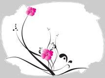 Floral. Illustration drawing of floral design Stock Photo