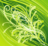 Floral abstract. Sparkling floral green abstract background Royalty Free Stock Photos