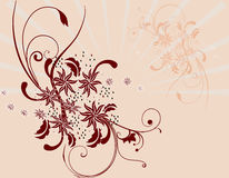 Floral abstract background. Abstract floral design in background Stock Photo