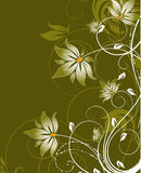 Floral abstract background Royalty Free Stock Image