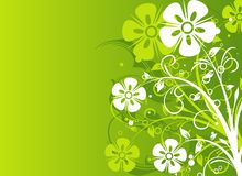 Floral abstract background,  Stock Photos