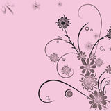 Floral abstract background. Illustration Royalty Free Stock Photography