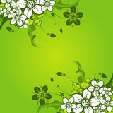 Floral abstract background,. Illustration Royalty Free Stock Photography