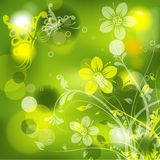 Floral abstract background,  Stock Photo