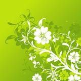 Floral abstract background,. Illustration Royalty Free Stock Photo