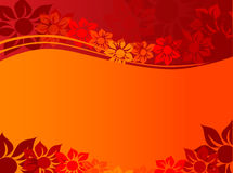 Floral Abstract Background. Flowers,orange,gradient Royalty Free Stock Image