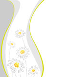 Floral abstract background. Abstract background with daisies and curved lines vector illustration