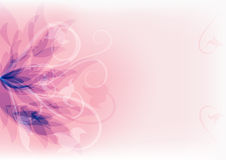 Floral abstract background. EPS10. Royalty Free Stock Photo