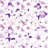 Floral abstract background in shades of purple. Abstract floral illustrated background of white flowers on purple stock illustration