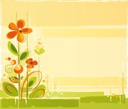 Floral Abstract Background. A Spring Colorful Floral Background Royalty Free Stock Images