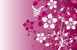 Floral abstract background, vector. Illustration Stock Photo