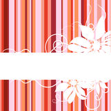 Floral Abstract Banner Royalty Free Stock Photos