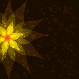 Floral abstract dark background, invitation or gre Royalty Free Stock Photos