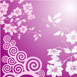Floral abstract design Royalty Free Stock Photo