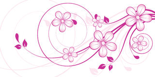 Floral abstract design element Stock Photography