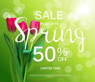 Floral Abstract Design Spring Sale Banner Template with Tulips V Royalty Free Stock Photography