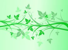 Floral abstract green Royalty Free Stock Photos