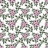 Floral abstract  seamless pattern,white background Royalty Free Stock Photos