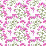 Floral abstract  seamless pattern,  white background Royalty Free Stock Photography