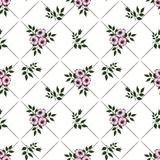 Floral abstract  seamless pattern,white background striped Stock Photography