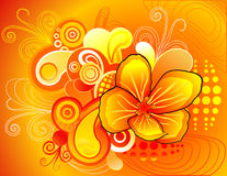 Floral abstract vector Royalty Free Stock Images
